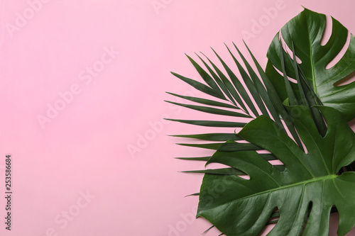 Foto auf Leinwand Rosa hell Flat lay composition with tropical leaves and space for text on color background