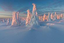 Panoramic View Of Beautiful Winter Wonderland Scenery In Scenic Golden Evening Light At Sunset With Clouds In Scandinavia, Northern Europe Colorful Winter Sunrise In Mountains. Christmas Time Concept