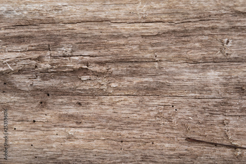 Recess Fitting Wood smooth brown tree texture