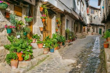 Fototapeta na wymiar Old street of San Martin de Trevejo, Caceres, Extremadura, Spain.