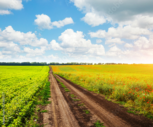 Foto op Plexiglas Europa Captivating scene of the countryside with white fluffy clouds.