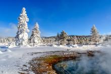 Steaming Geothermal Pool In A ...