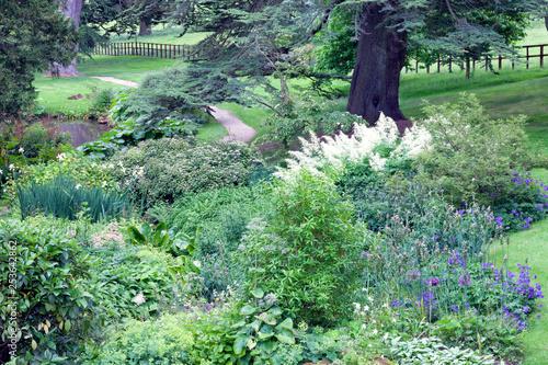Gravel Path Through Lush English Garden With Cottage Flowers