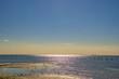 三番瀬から見た光る東京湾