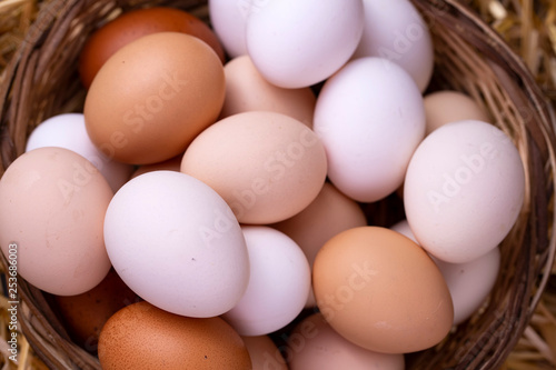 Canvas Print Raw eggs in dry straw. Food concept photo.