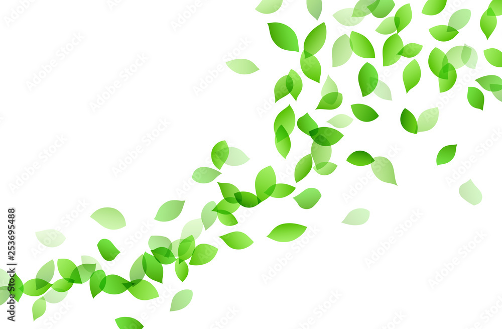 Fototapety, obrazy: Leaf dancing image background material
