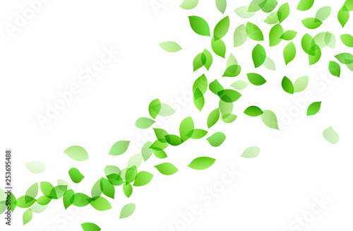 Leaf dancing image background material Canvas