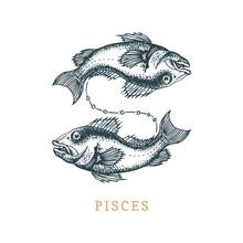 Pisces Zodiac Symbol, Hand Dra...