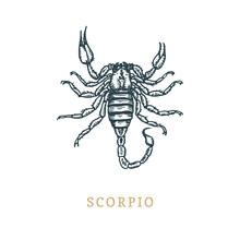 Scorpio Zodiac Symbol, Hand Dr...