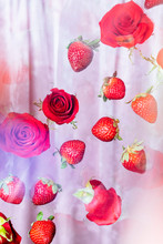 Floating Strawberries And Red Roses With Pink Velvet