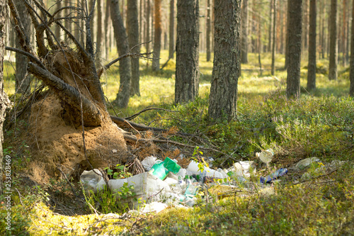 Poster Cygne Garbage dump in a pine forest. Environmental pollution.