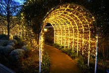 電飾、庭園