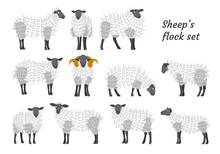 Sheep Vector Set Flock Group W...