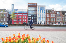Businessman Rides Bicycle In Amsterdam