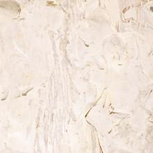 Paper Bark Background Paperbark Texture