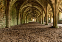 Vaulted Cellarium