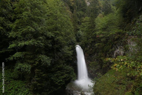 Poster Parc Naturel Palovit Waterfall with in the green forest, Rize, Turkey