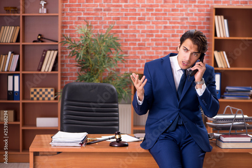 Fotografie, Obraz  Young handsome lawyer working in his office