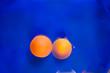 Leinwanddruck Bild - two tangerines in blue water