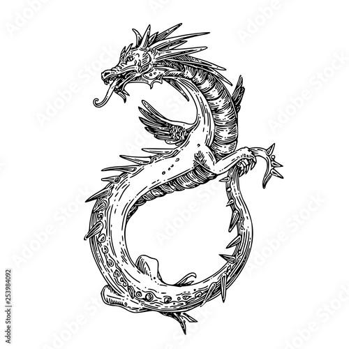 Flying dragon Tablou Canvas