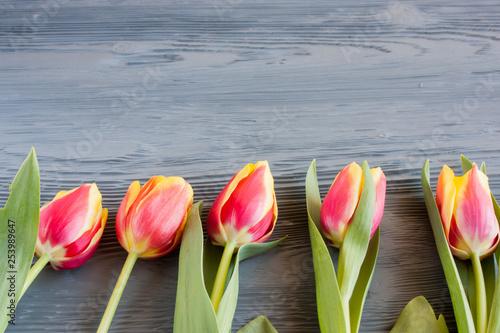 czerwone i żółte tulipany na szarym drewnianym stole
