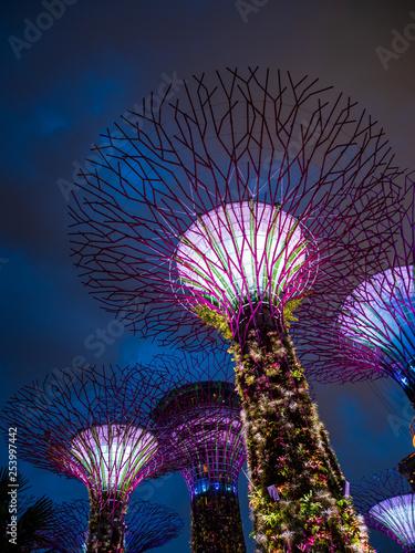 Ogrody nad zatoką w Singapurze