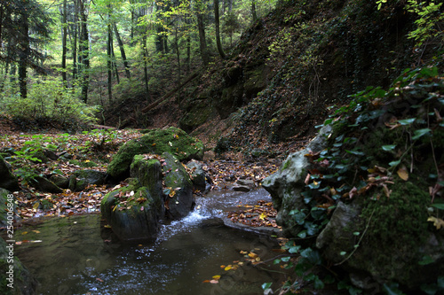 Printed kitchen splashbacks River Stream in a mountain gorge in the autumn forest.