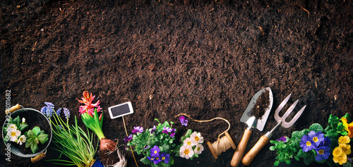 Spoed Fotobehang Tuin Gardening tools and flowers on soil