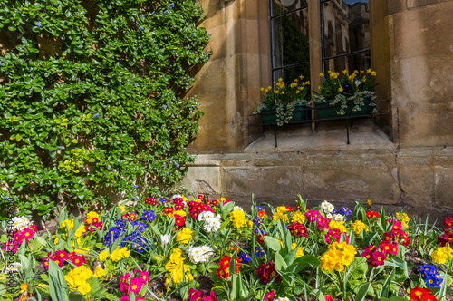 Cambridge City, Amazing architectural design with flowers inside interior courty Fototapete