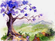 Blooming Jacaranda Tree On The Precipice. Hand Drawn .Watercolor Illustration