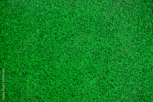 Green artificial grass top view background. Canvas Print