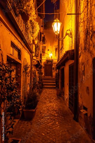 Foto auf Leinwand Stockholm Trevignano Romano (Italy) - A nice medieval town on Bracciano lake, province of Rome, Lazio region, here at sunset