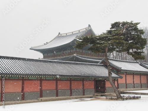 Fotografie, Obraz  서울 창덕궁