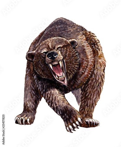 Fotografie, Tablou  Cave bear illustration. Grizzly bear attack.