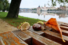 A Detail Of The Chestnut On A Bench With Its Leaf. The Historic Town Is Behind.