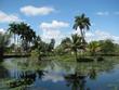 beautiful cuban tropical background