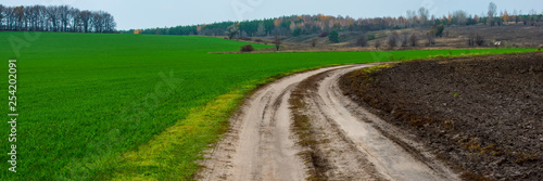 Foto op Aluminium Groene dirt road between a plowed field and a field of winter wheat in hilly terrain.