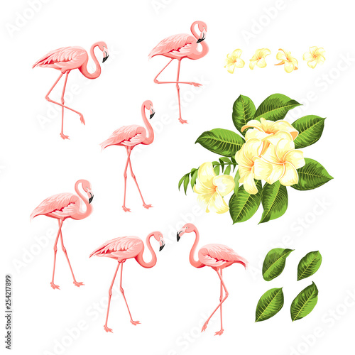 Canvas Prints Flamingo Tropical birds and flowers collection. Pink flamingos set. Plumeria flowers kit. Fashion summer print bundle. Elements for invitation card and your template design. Vector illustration.