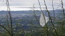A White Plastic Bag Stuck On A Branch And Waving In The Wind. Plastic Waste In The Mountains And A City In The Background.