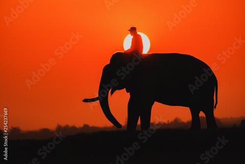 Tuinposter Rood elephant safari