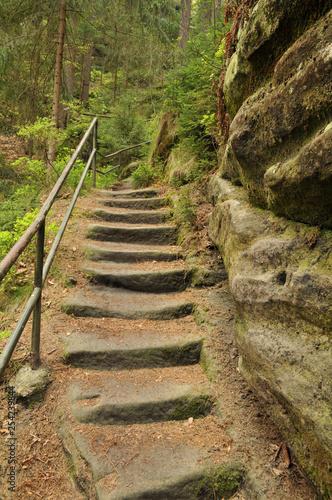 Photo Treppe im Wald