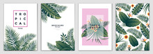 Tropical Brochure Design Layout Template In A4 Size, Greeting Cards. Frame With Tropic Leaves. Ideal For Party Poster, Greeting Card, Banner Or Invitation. Vector Illustration