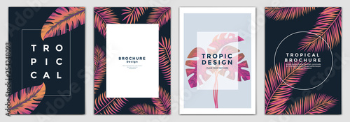 Fototapeta Tropical Brochure Design Layout Template In A4 Size Greeting Cards Frame With Tropic Leaves Ideal For Party Poster Greeting Card