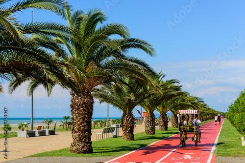 Photo Batumi seafront boulevard