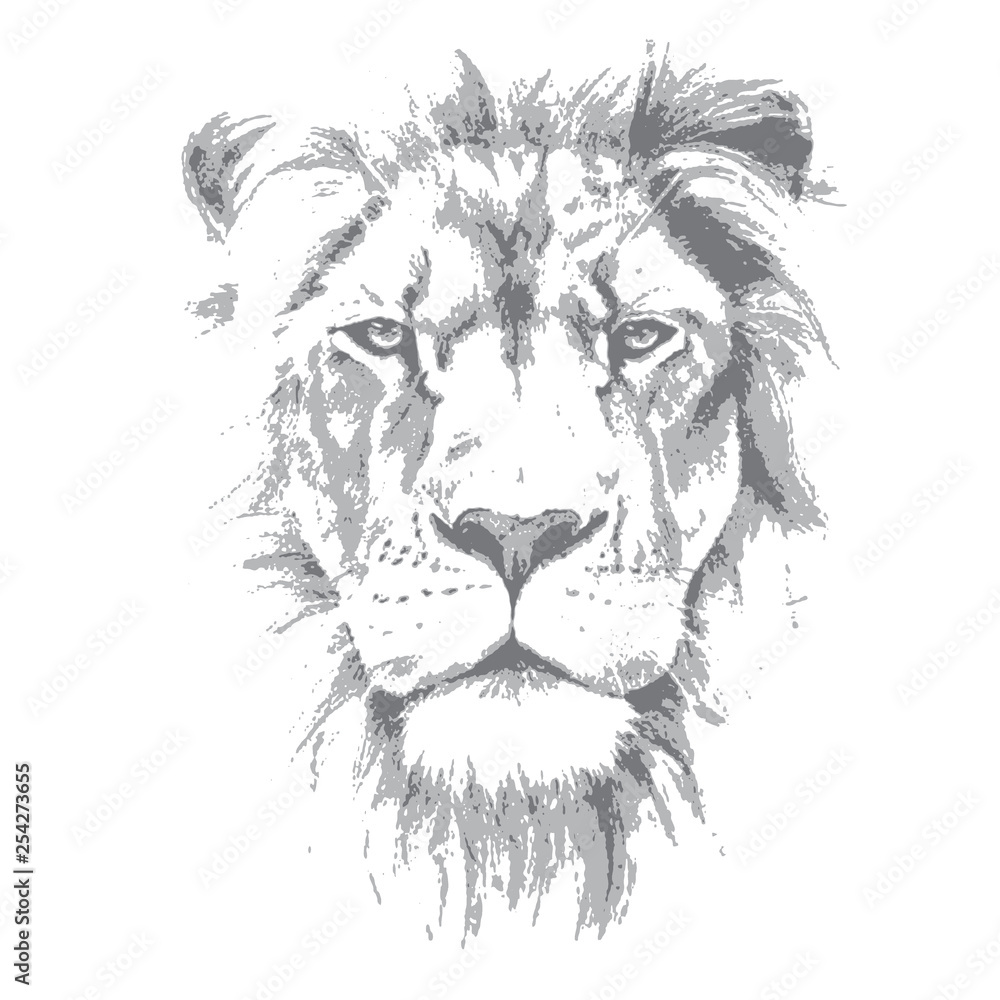 Fototapeta Lion head. Hand drawn vector illustration