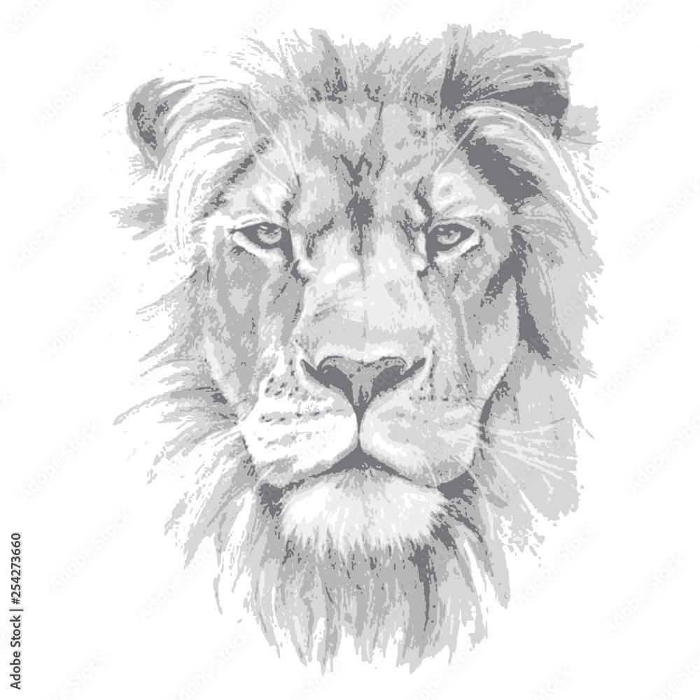 Fototapeta Lion head. Hand drawn vector illustration