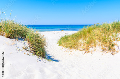 Fototapeta Wydmy   path-to-beach-and-sand-dunes-on-hiddensee-island-on-sunny-summer-day-baltic-sea-germany