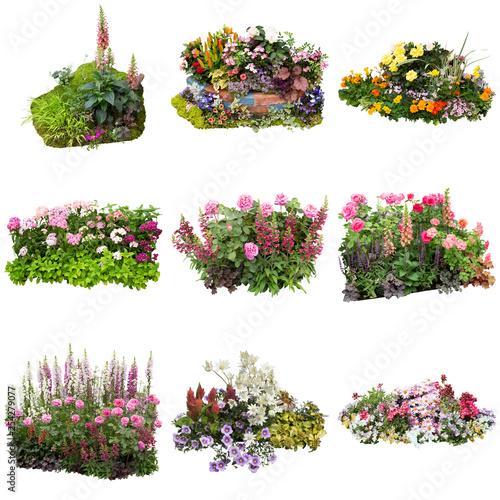 Valokuva 花の寄せ植えガーデニング素材
