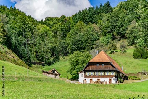 Montage in der Fensternische Pistazie House in Black Forest