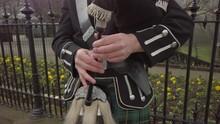 Close-up Of A Male Scottish Ba...